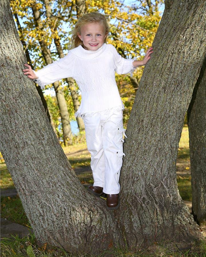 Gullig flickaklättring på tree royaltyfri foto
