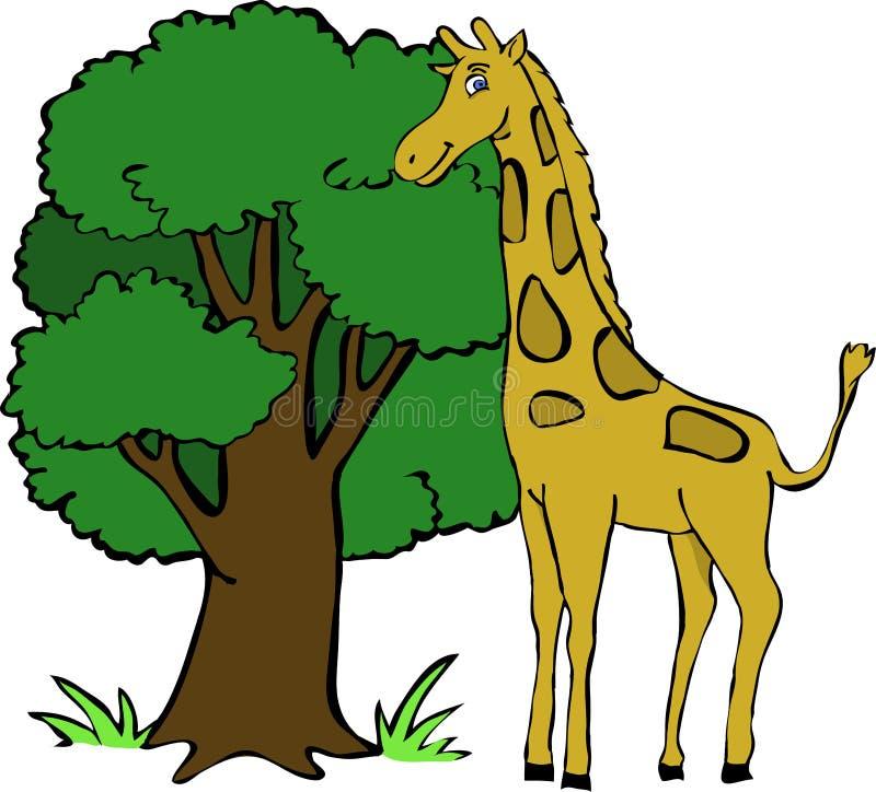 Gullig giraff royaltyfri bild