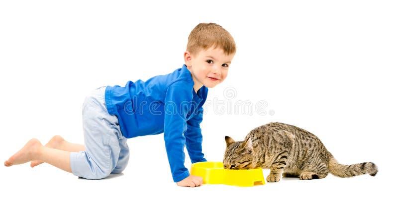 Gullig gladlynt pojke och katten som äter arkivbild
