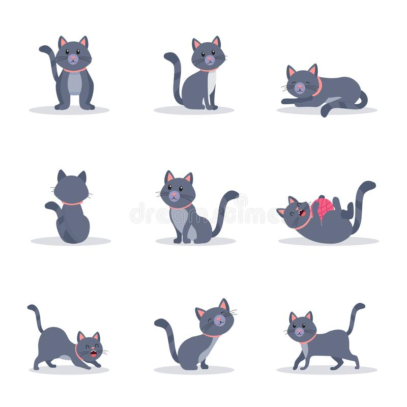 Gullig grå uppsättning för illustrationer för kattvektorfärg royaltyfri illustrationer