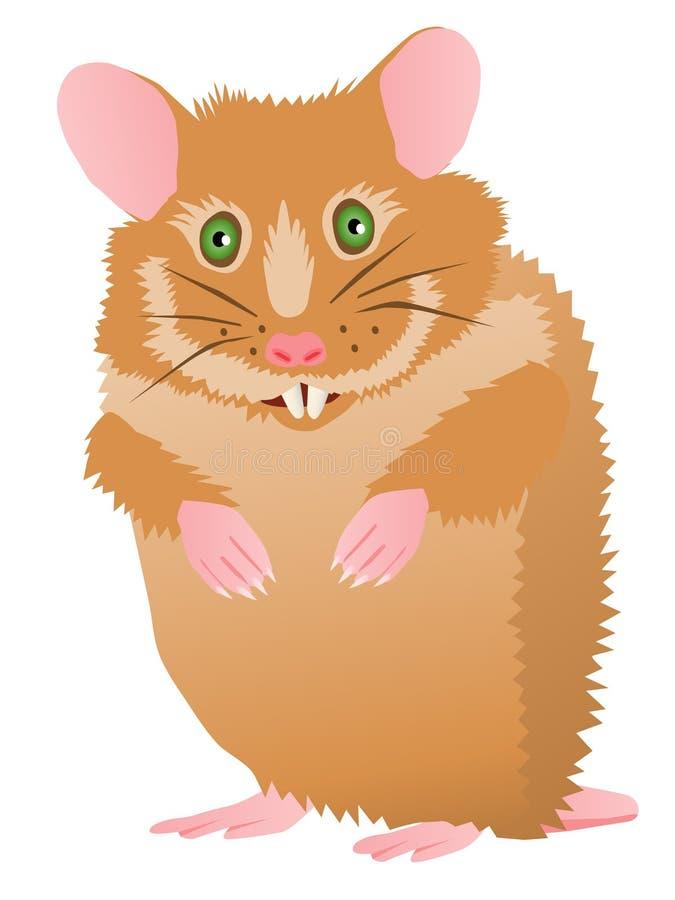 gullig hamster för tecknad film stock illustrationer