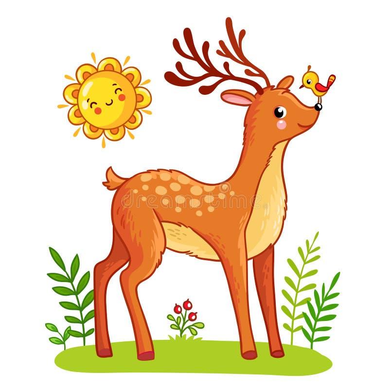 Gullig hjort står på ängen vektor illustrationer