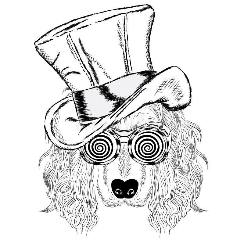 Gullig hund i en ovanlig hatt royaltyfri illustrationer