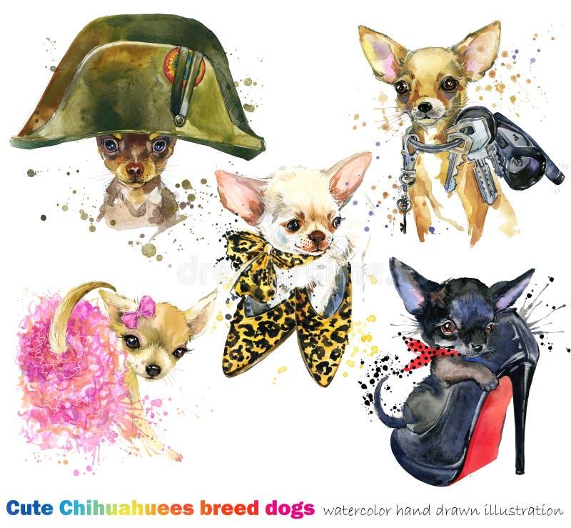 Gullig hund med uppsättningen för modetillbehör tamdjurvattenfärgillustration royaltyfri illustrationer