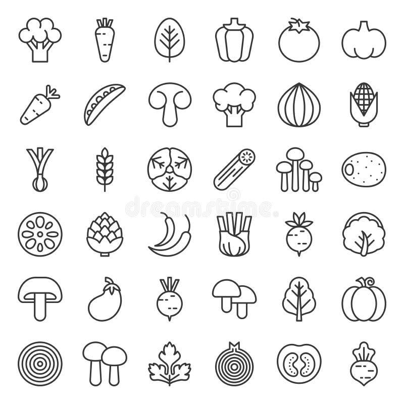 Gullig linje grönsaksymbolsuppsättning, vektorillustration vektor illustrationer