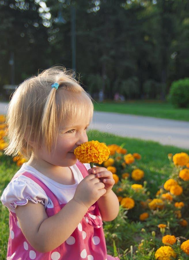 Gullig liten flicka i en parkera arkivfoton