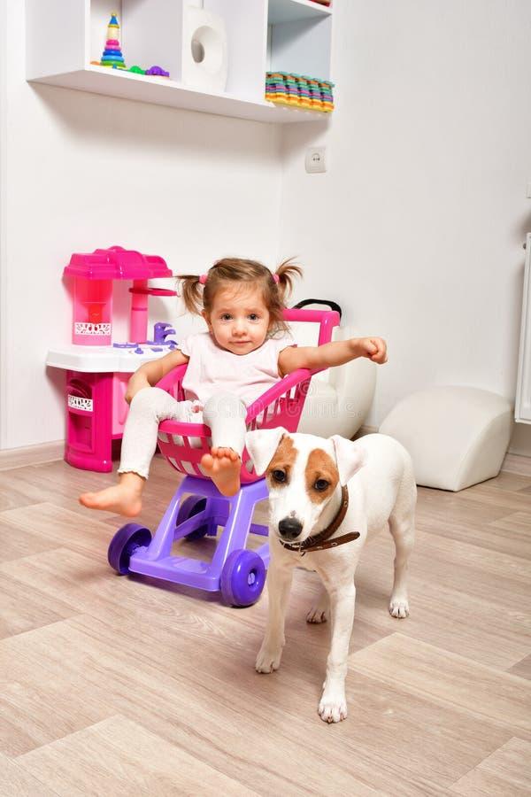 Gullig liten flicka och en hund tillsammans royaltyfri foto