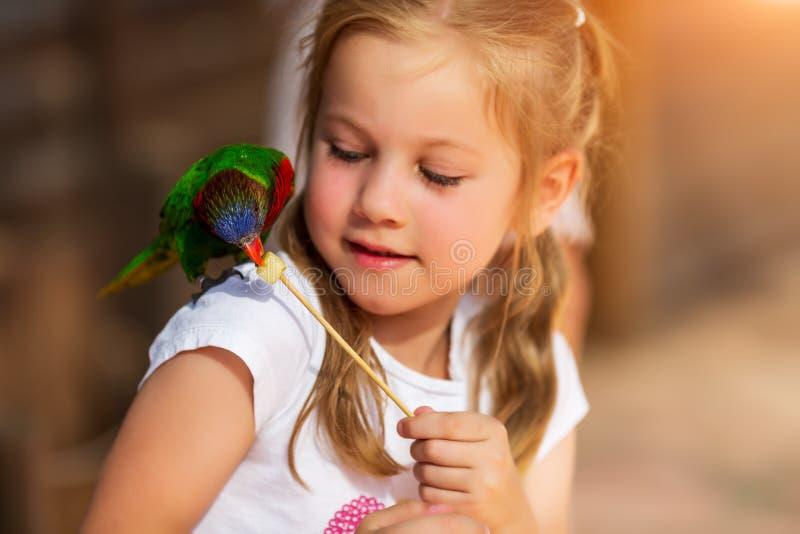 Gullig liten flicka som spelar med en papegoja och att mata honom royaltyfria foton