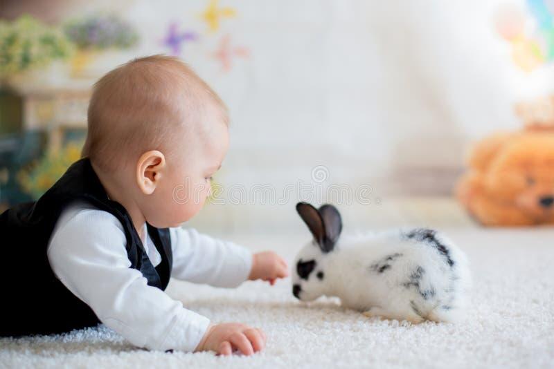 Gullig liten litet barnpojke, smart tillfälligt för påklädd som spelar med litt arkivfoton