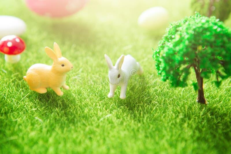 Gullig liten påsk Bunnys i ängen Vårblommor och grönt gräs sunbeams Gul äng för vår för easter ägg med vita två royaltyfri fotografi