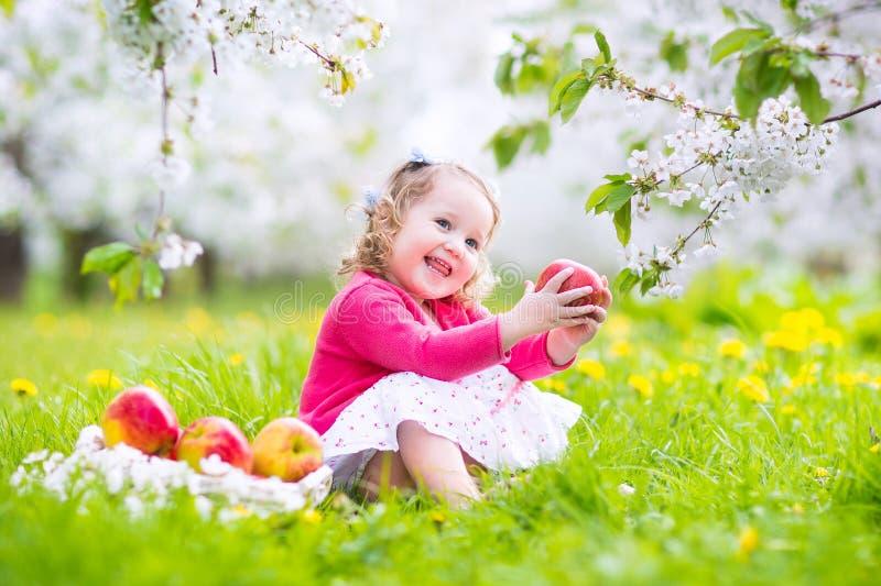 Gullig litet barnflicka som äter äpplet i en blommande trädgård royaltyfri foto