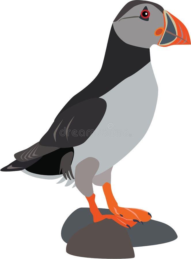 Gullig lunnefågelvektor royaltyfria bilder