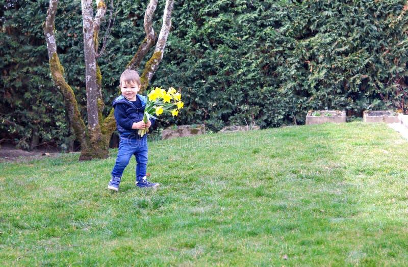 Gullig lycklig le pys i den blåa västinnehavbuketten av ljusa gula påskliljablommor som blir på grönt gräs royaltyfri fotografi