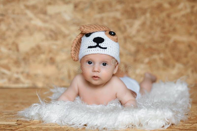 Gullig pojke i en lockhund Ståenden av en 2 gammal månad behandla som ett barn royaltyfria foton