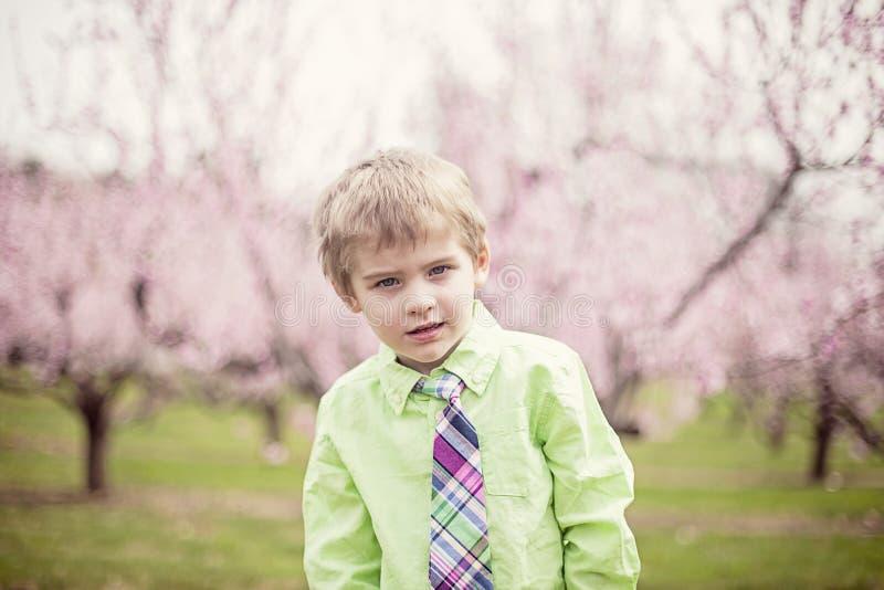 Gullig pojke i vår royaltyfria bilder