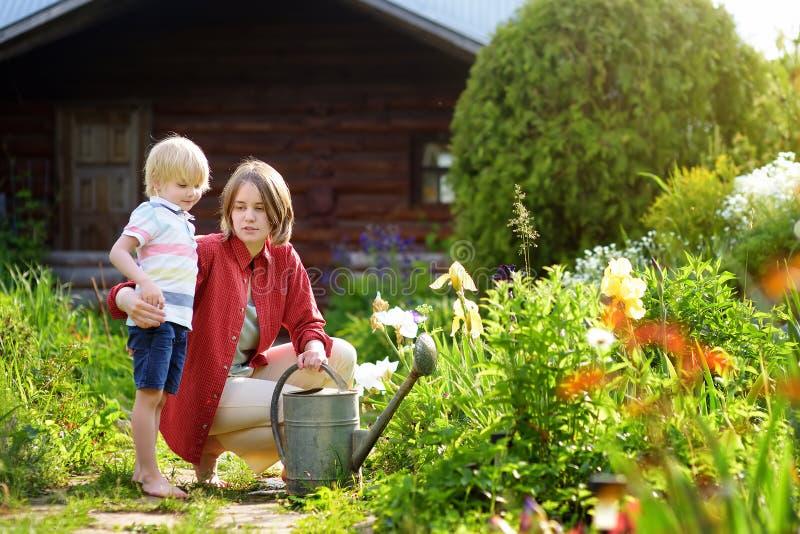 Gullig pys och hans ung moder som bevattnar växter i trädgården på den soliga dagen för sommar royaltyfri foto