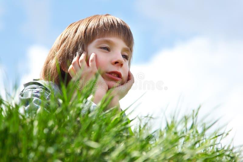 Gullig pys som lägger på grönt gräs över vårnatur för blå himmel royaltyfria bilder