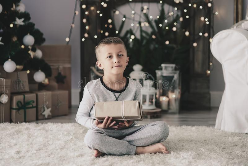 Gullig pys under jul arkivfoto