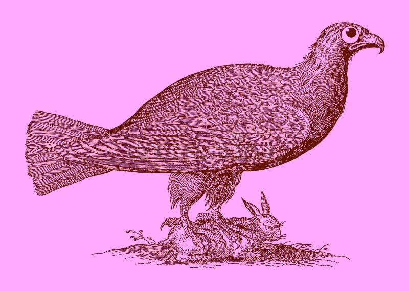 Gullig rovdjur: örnsammanträde på en fångad kanin vektor illustrationer