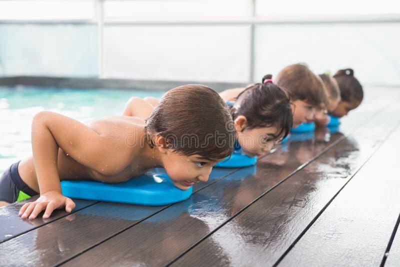 Gullig simninggrupp i pölen royaltyfria foton