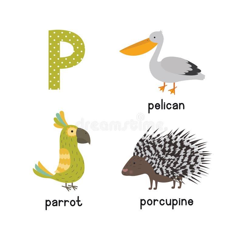 Gullig spåring för bokstav för barnzooalfabet P av den roliga djura tecknade filmen för ungar papegojaett piggsvinpelikan stock illustrationer