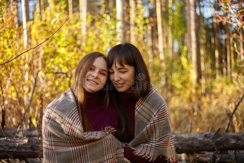 Gullig stående av modern och dottern i höstskogen royaltyfri bild