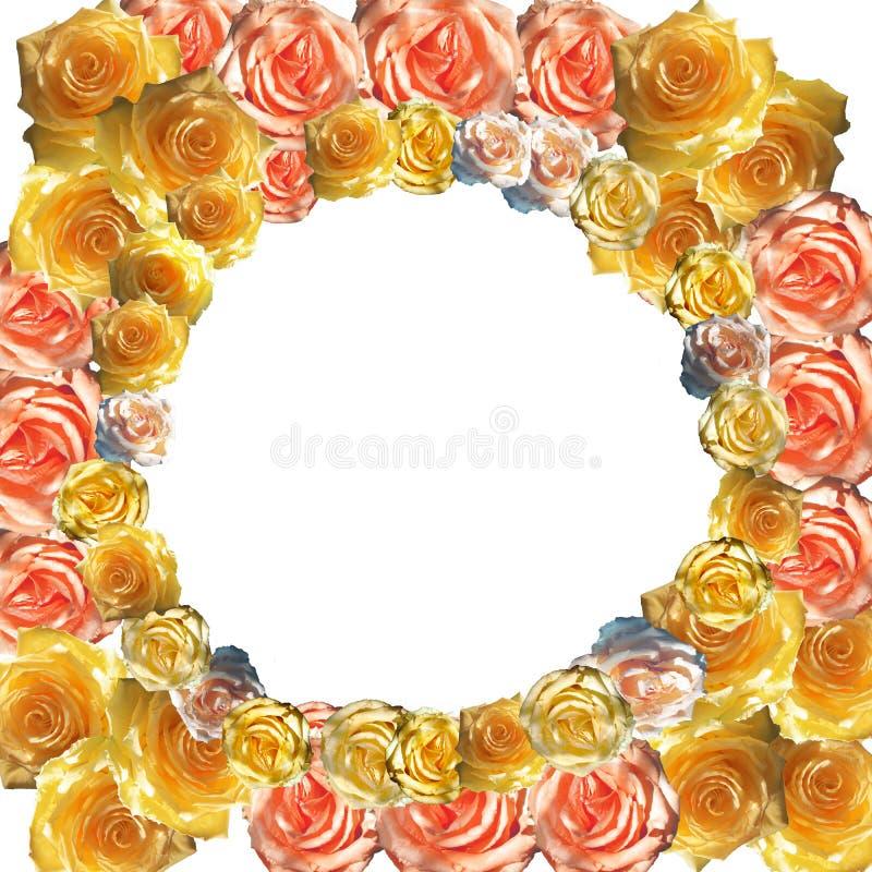 Gullig stilfull brännmärka modell med blommor arkivbild