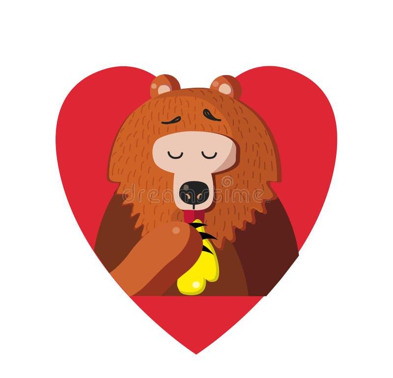 Gullig tecknad filmbjörn som inom äter honung av röd hjärta på vit bakgrund vektor illustrationer