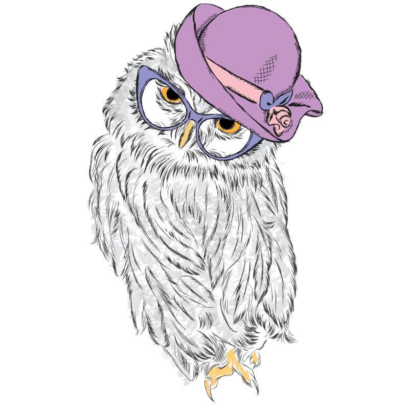 Gullig uggla som bär en hatt och solglasögon stock illustrationer