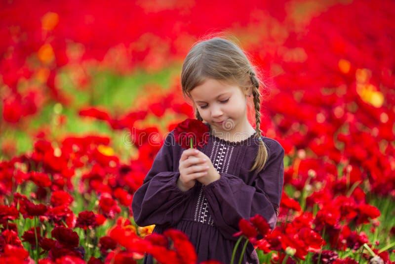 Gullig ung flicka med en blomma i hennes hand mot bakgrunden av röda blommor arkivbilder