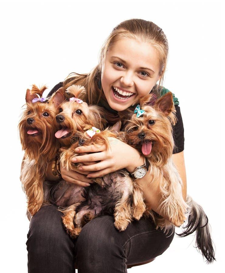 Gullig ung flicka med hundar för Yorkshire terrier arkivbild