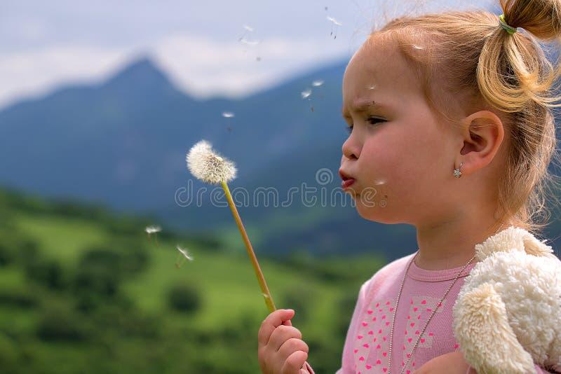 Gullig ung liten flicka som blåser maskrosen i solig dag arkivbilder