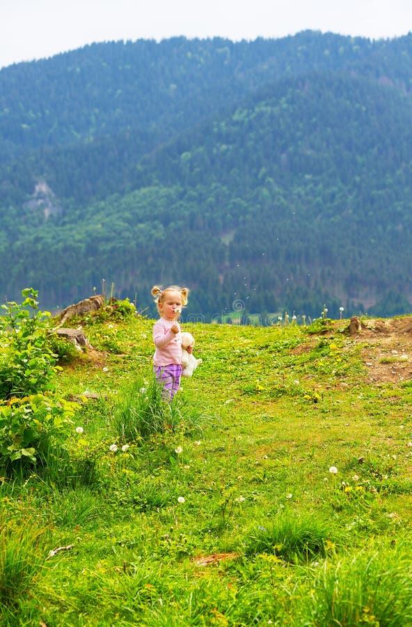 Gullig ung liten flicka som blåser maskrosen i solig dag royaltyfria foton