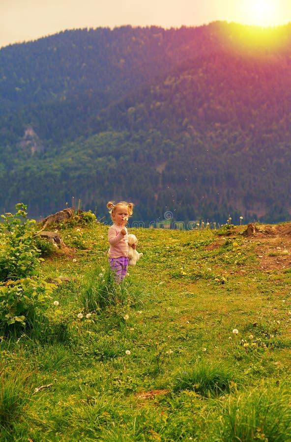 Gullig ung liten flicka som blåser maskrosen i solnedgångljus royaltyfri foto
