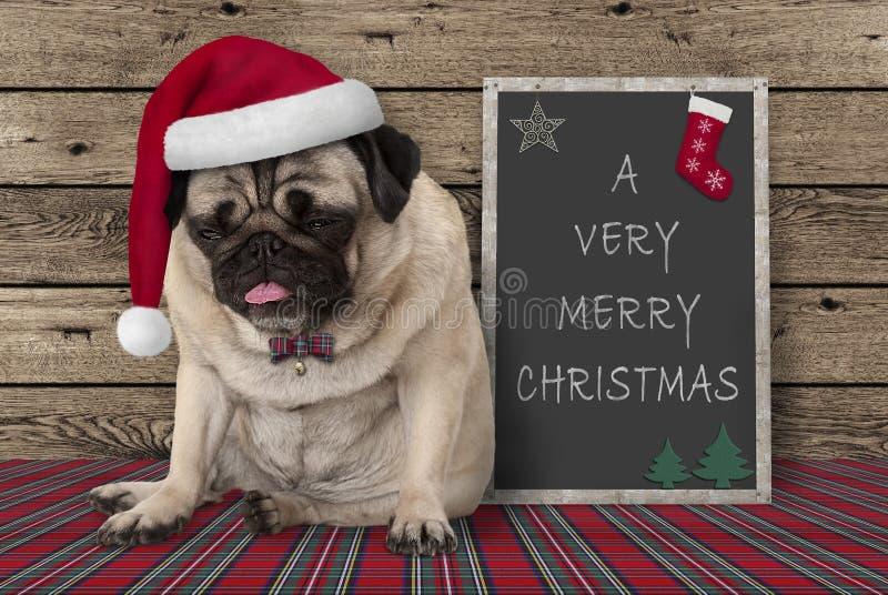 Gullig vresig mopsvalphund med rött santa hattsammanträde bredvid svart tavlatecken med glad jul för text mycket, på träbakgrund arkivbild