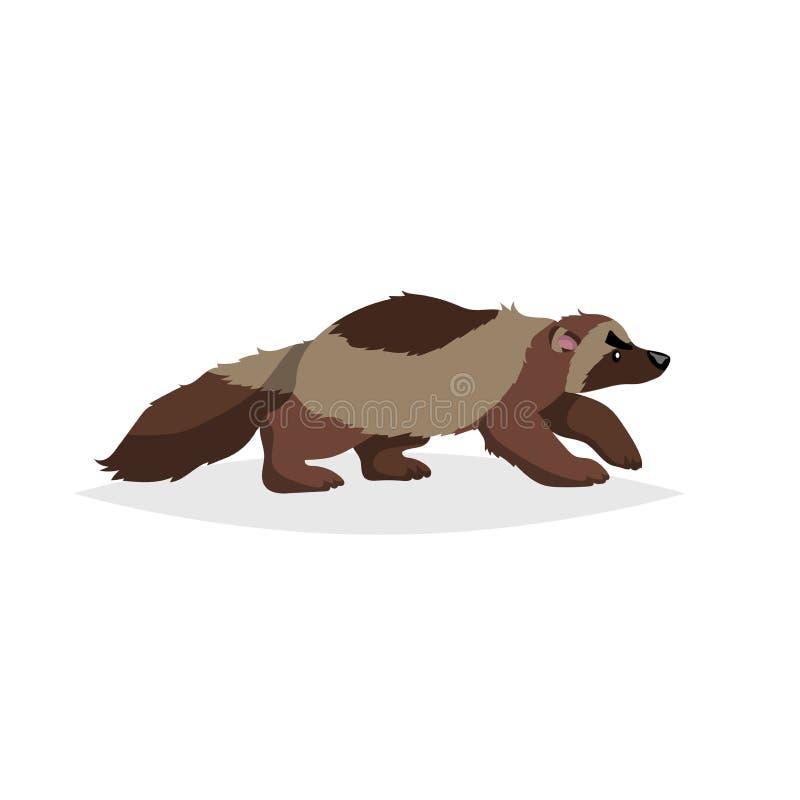 Gullig wolverine För stilvektor för tecknad film komisk illustration av det lösa djuret för skog Rovdjurs- farlig djur teckning vektor illustrationer
