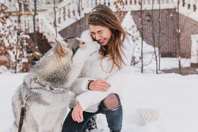 Gulliga älskvärda ögonblick för stående av den skrovliga hunden som kysser den trendiga unga kvinnan som är utomhus- i snö Gladly arkivbild