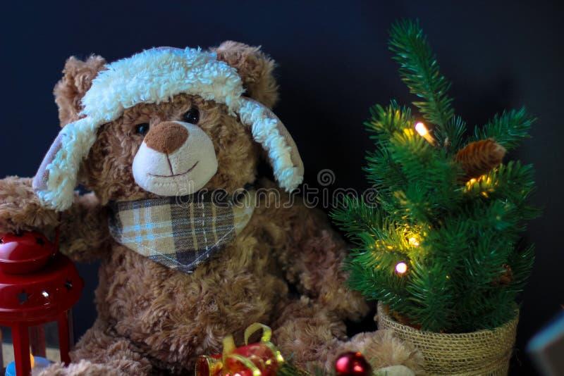 Gulliga den leksakbjörnen som rymmer, tafsar på en röd lykta på en svart bakgrund I ramen kan du se en liten julgran med arkivbilder