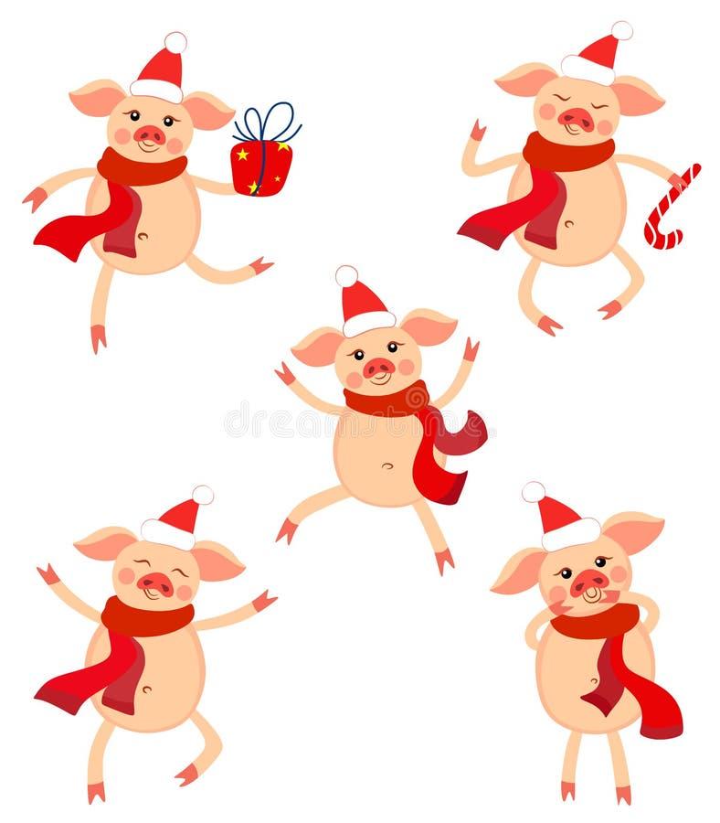 Gulliga det nya årets uppsättning av svin i olikt poserar Gulliga svin för året av svinet vektor illustrationer