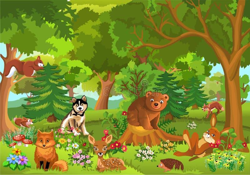 Gulliga djur i skogen royaltyfri illustrationer