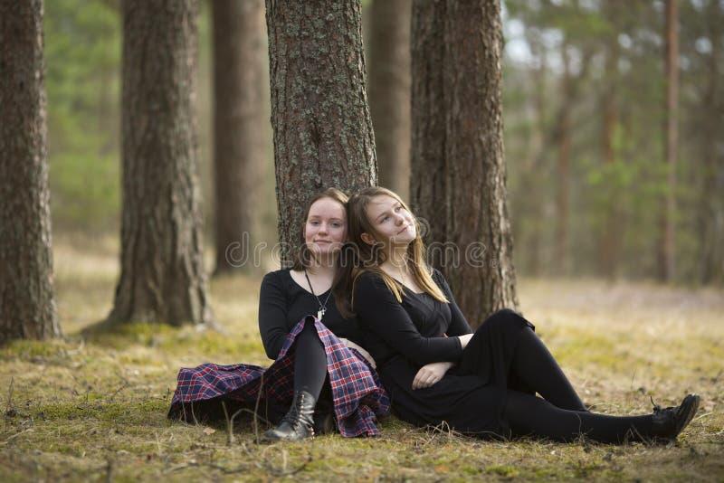 Gulliga flickavänner som sitter i gå för skog royaltyfria foton