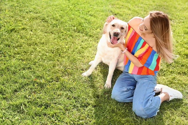 Gulliga gula labrador retriever med ägaren arkivfoton