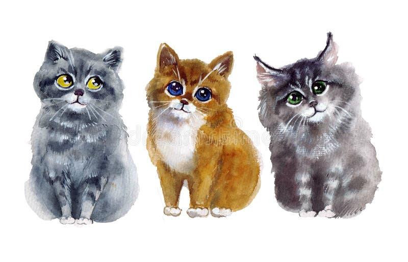 Gulliga katter för vattenfärg på den vita bakgrunden vektor illustrationer
