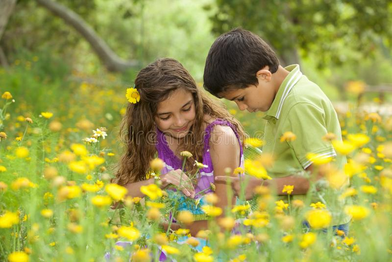 Gulliga Little Boy och flicka utanför i ett blommafält arkivfoton