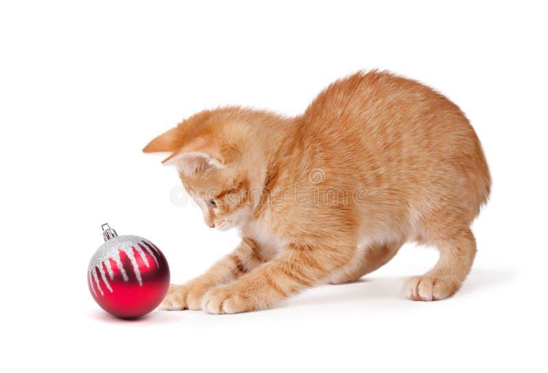 Gulliga orange Kitten Playing med en julprydnad på vit royaltyfri bild