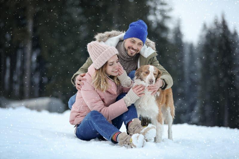 Gulliga par med hunden nära skogvinter royaltyfri bild