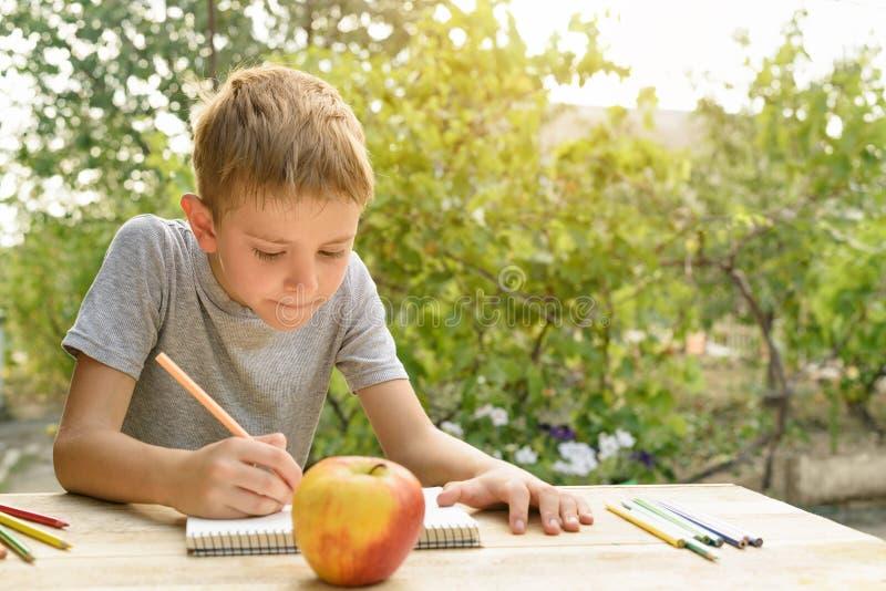 Gulliga pojkeattraktioner med blyertspennastilleben ?ppen luft Tr?dg?rd i bakgrunden id?rikt begrepp arkivfoton