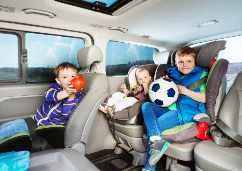 Gulliga pyser som reser med bilen i säkerhetsplatser royaltyfri foto