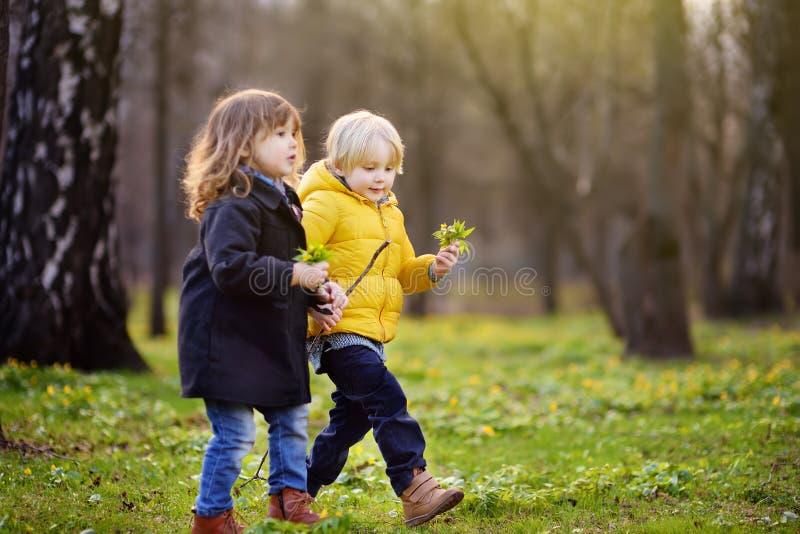 Gulliga små barn som tillsammans spelar i solig vår, parkerar arkivbilder