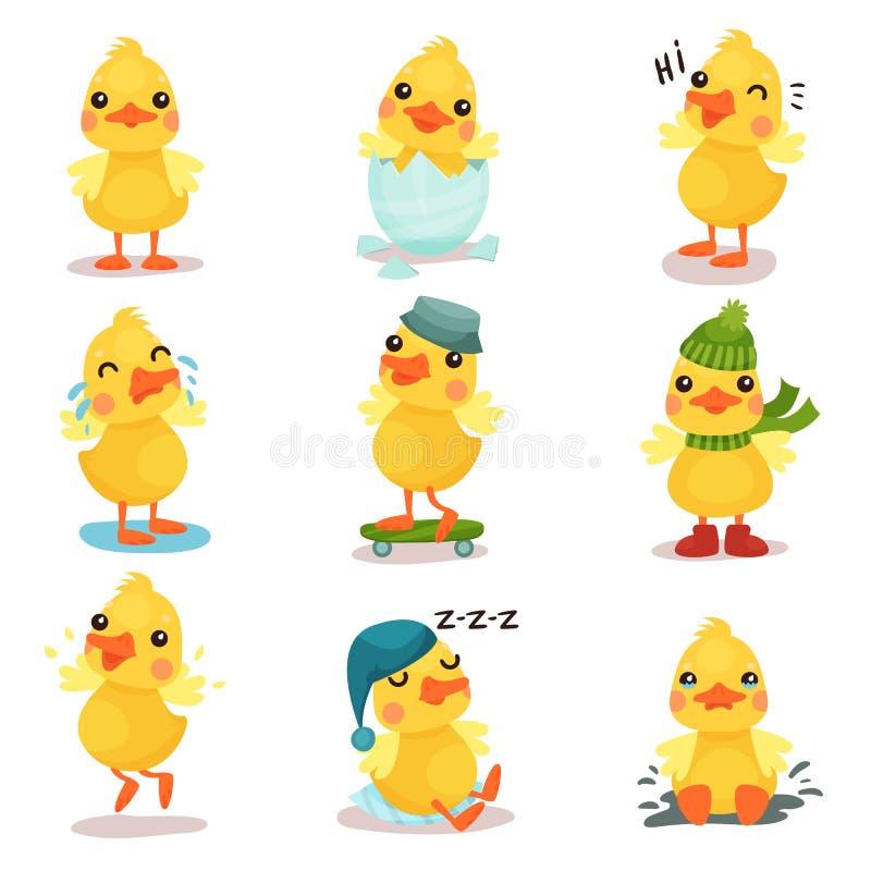Gulliga små gula andfågelungetecken ställer in, poserar ankungen i olikt och illustrationer för lägetecknad filmvektor vektor illustrationer